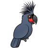 Duże papugi
